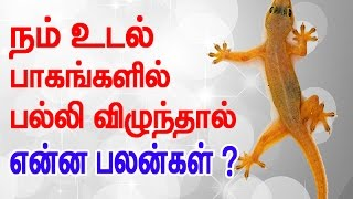Lizard falling on body parts Interesting prediction based on ancient Shastra