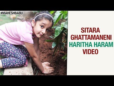 Sitara Ghattamaneni Haritha Haram Video | Mahesh Babu | #HarithaHaram
