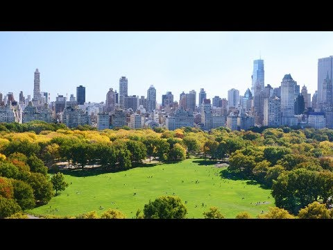 New York City's Green Revolution | The B1M