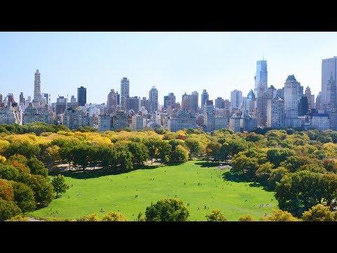 New York City's Green Revolution | The B1M