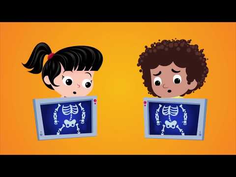 I can move my body | Songs for kids | Pipalupa