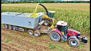 Corn silage 2017 CASE PUMA 230 CVX + Siga Duo + Wielton Agrofilip