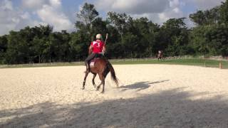 Polo Lessons 3: Full Swing how to do it in arena polo