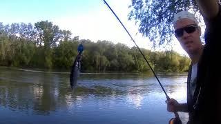 НАХЛИСТ В МОЛДОВІ | Fly Fishing | Проїжджав повз , вирішив перевірити.