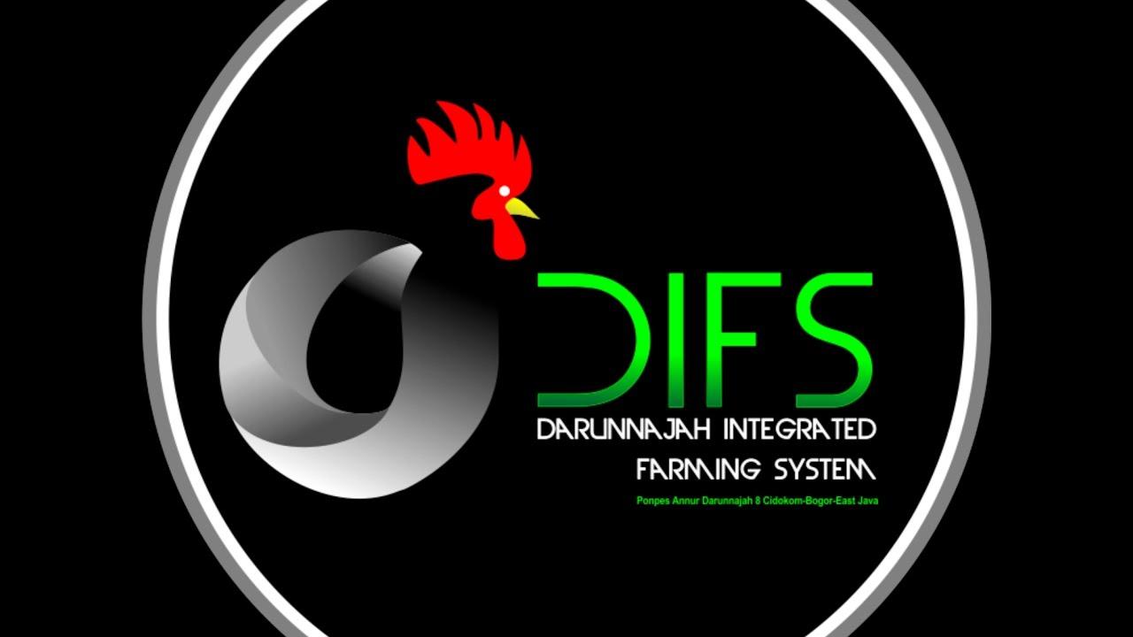 Logo Ayam Youtube Gambar Keren