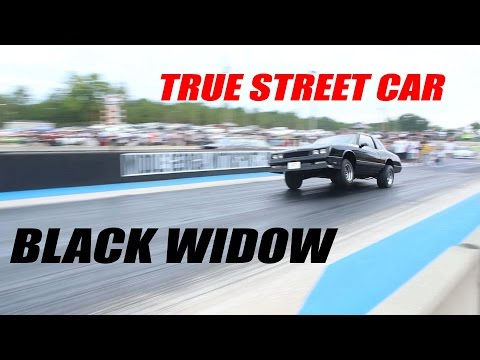 Black Widow Monte Carlo SS: True Daily Driver