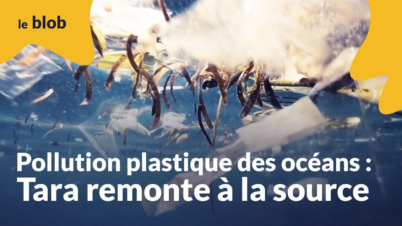 Pollution plastique des océans : Tara remonte à la source | Interview