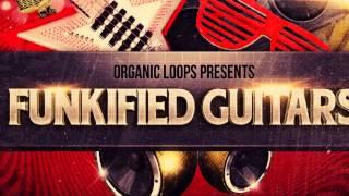 Guitar Samples - Organic Loops - Funkified Guitars