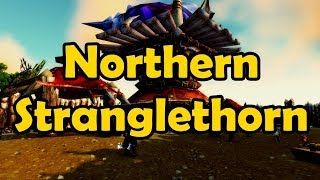 Doing all the Quests in Northern Stranglethorn (BfA) - WoW Stream