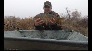 Рыбалка на карпа в ноябре трудовой осенний карп