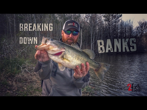 Video Bank fishing for catfish