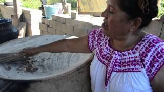 Mole negro de Marcelina González en Cuilapam de Guerrero, Oaxaca
