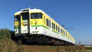 115系 弥彦色 臨時列車