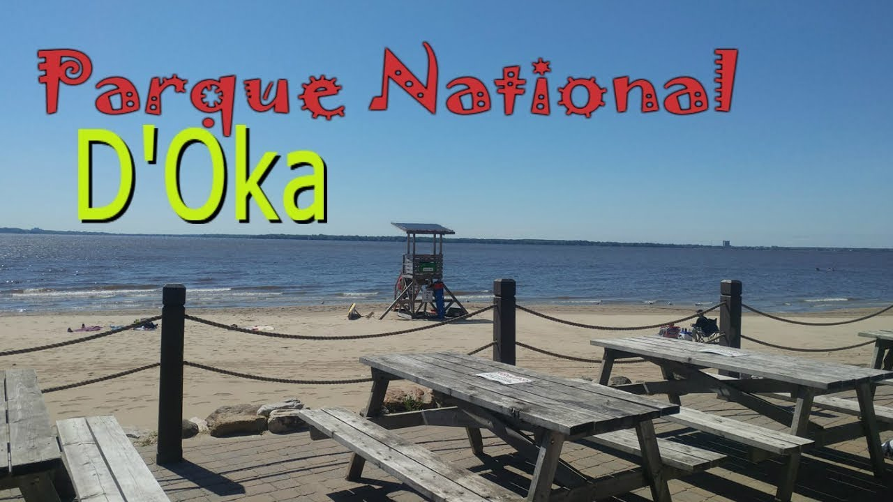 Police divers pull two bodies from the water at Oka beach