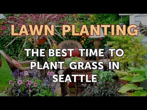 The Best Time to Plant Grass in Seattle