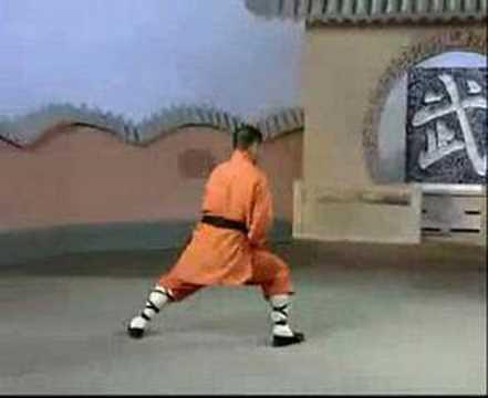 Shaolin Tai Zu Chang Quan 少林太祖長拳Yi Lu