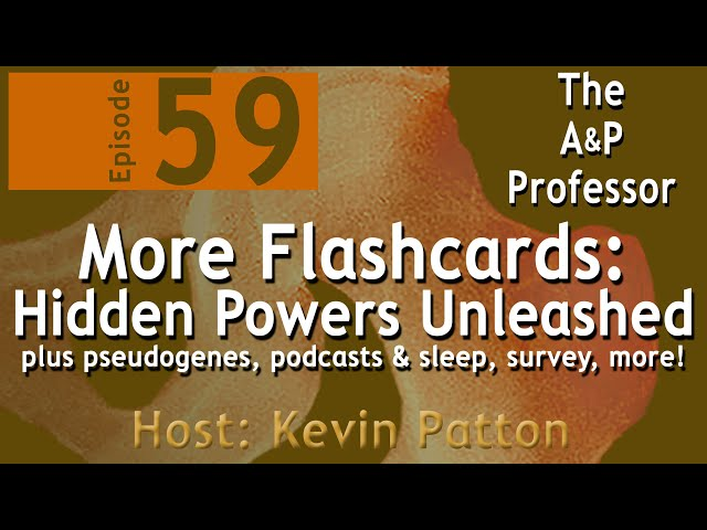 More Flashcards: Hidden Powers Unleashed | Episode 59