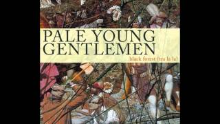 Watch Pale Young Gentlemen I Wasnt Worried video