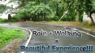 Evening Walk in the Rain | Rain Sounds | Nature Sounds | Rain + Walking = Beautiful Experience