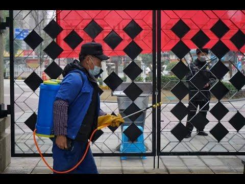 Коронавирус. Всё хуже, чем вы думаете. Китайцы в страхе   влог из Пекина