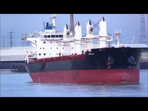 AMALIA Bulk Cargo Ship 17/10/2017 Thames Shipping by R.A.S.
