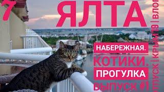 Ялта. Набережная, ялтинские коты, прогулка по городу.Часть 1.Отпуск   Крым 2019   Таша Муляр Влог