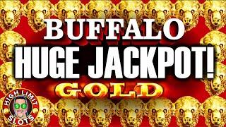 Buffalo Gold High Limit Jackpot Hard Rock Casino LAS VEGAS
