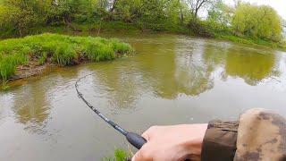 ГОЛАВЛЬ не Подвёл Спиннинг весной на малой реке Рыбалка 2020