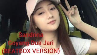 Gambar cover Goyang Dua Jari Sandrina-Beatbox Version