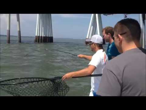 OCMD Fishing Trip With Ocean City Guide Service
