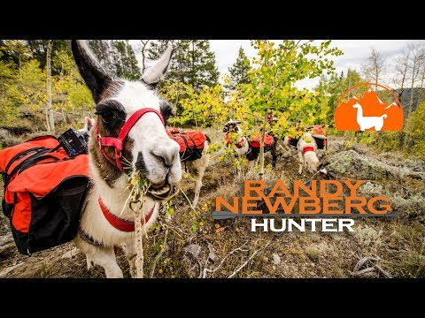 Rent Your Llamas Here! - Backcountry Hunting with Randy Newberg