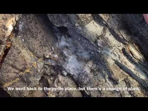 Pyrite Update - Biggest Piece Yet! // Rock Hunting