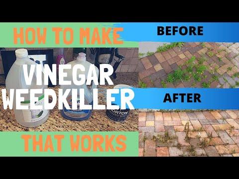 diy-homemade-weed-killer-–-how-to-make-vinegar-weed-killer-that-works