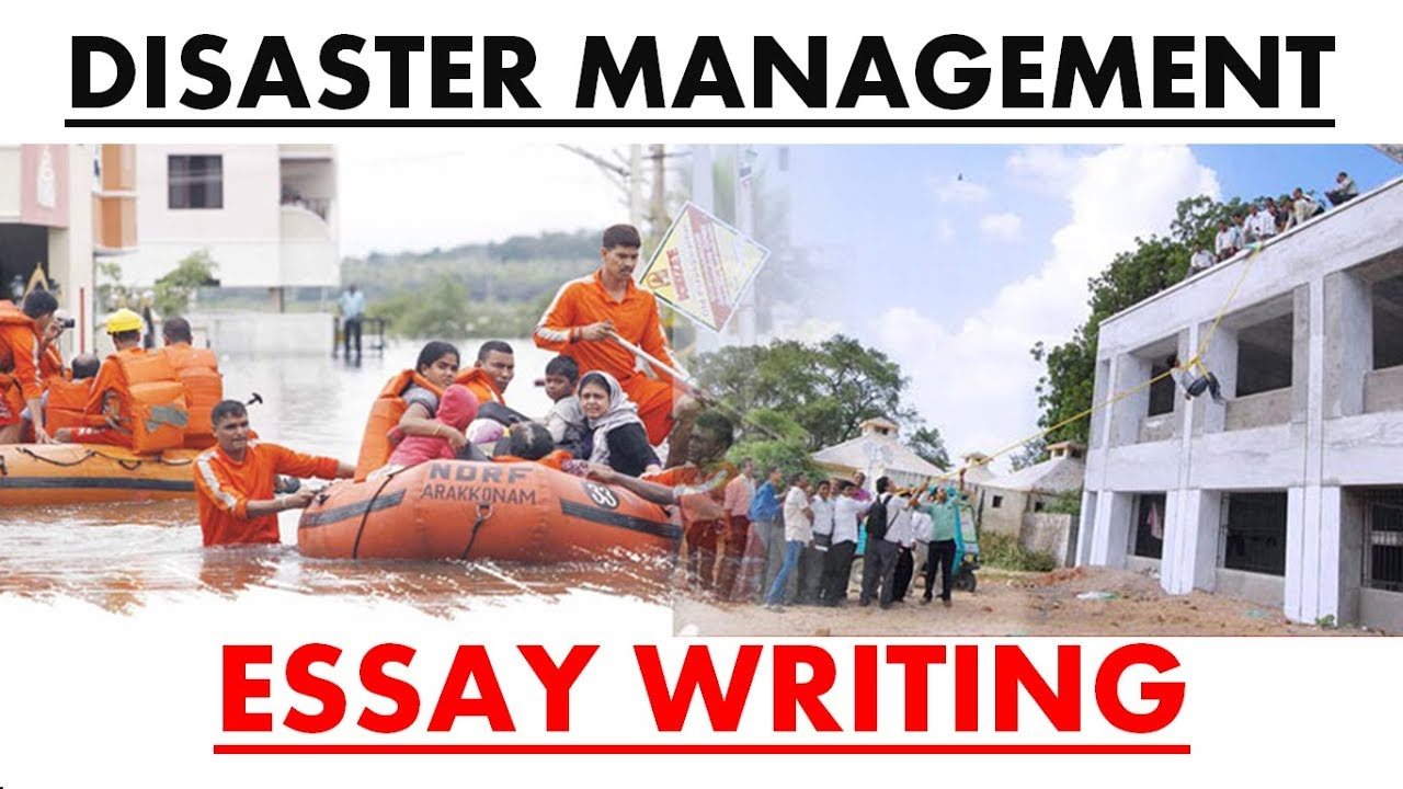 management essay