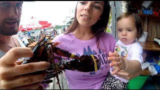 BABY TOUCHES A LIVE LOBSTER!