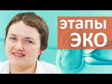 Этапы ЭКО. 💉 Что такое эмбриологический этап ЭКО? Мать и Дитя Юго-Запад