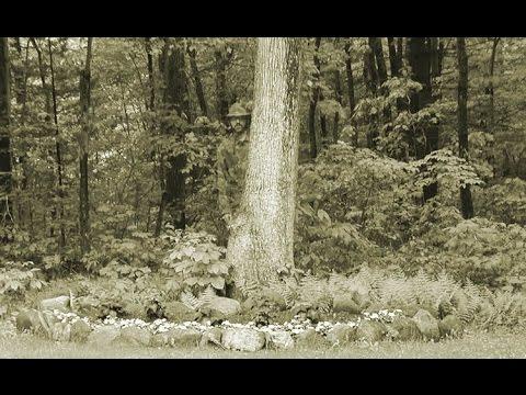 Документальный фильм 2015 Параллельные миры. Призраки и привидения