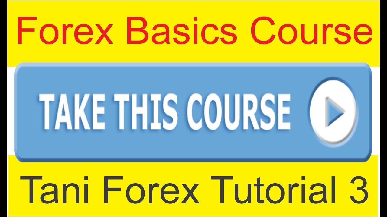 Forex basics youtube