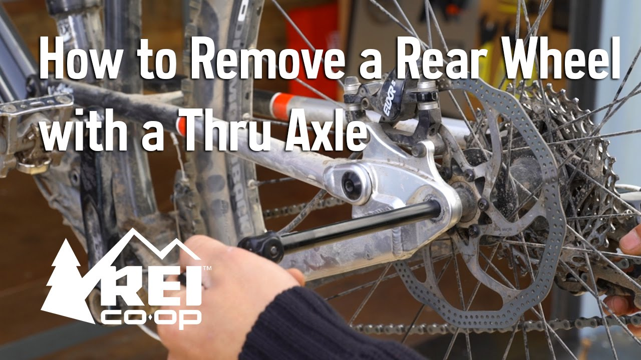 Bike Maintenance How To Remove A Rear Wheel With A Thru Axle Youtube