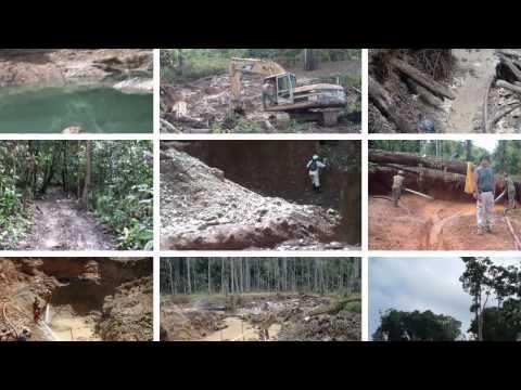 Guyana Gold Mining Project
