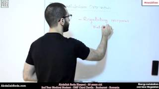 energy metabolism overview   regulation