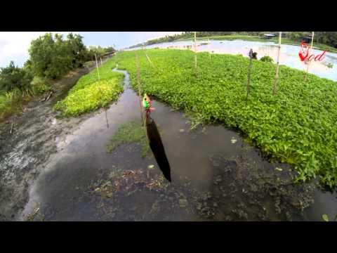 ตกปลาช่อนหมายแม่น้ำธรรมชาติ