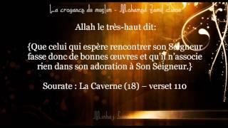La croyance du muslim - le polythéisme mineur