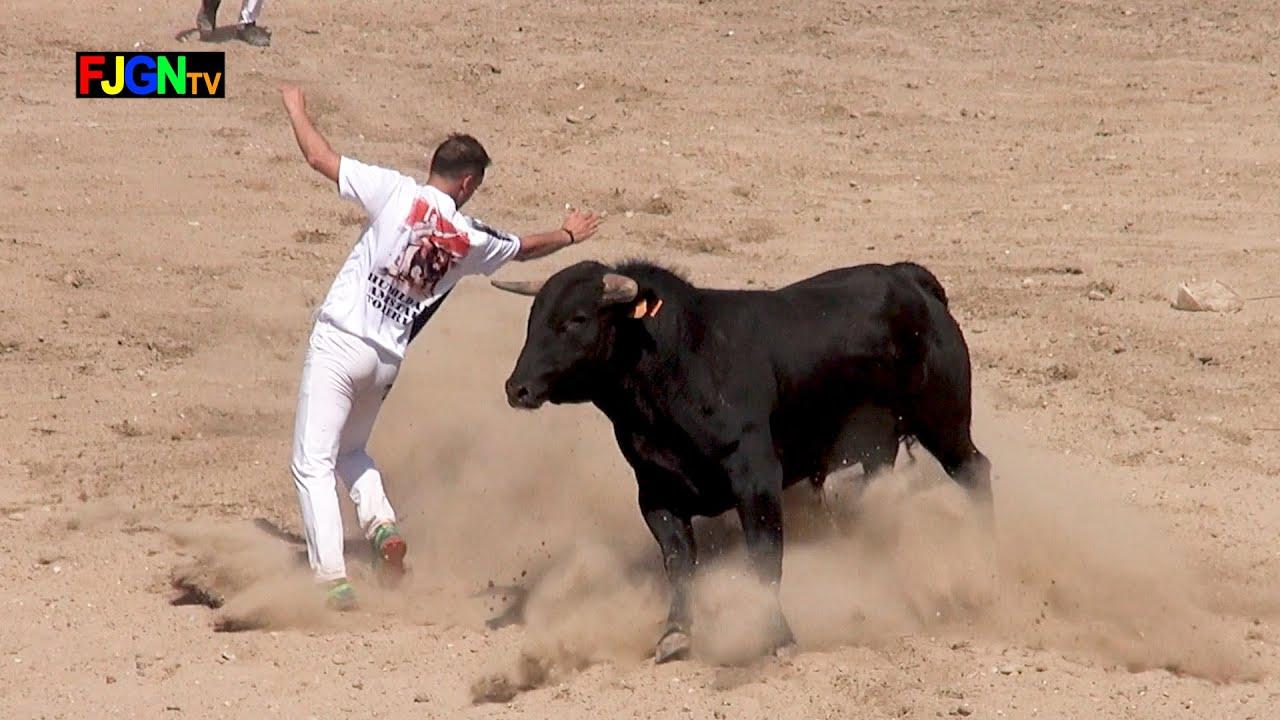 Concurso Recortadores Homenaje Javi Edo - Nules (Castellón) 14-04-2019 Bous Al Carrer [Toros FJGNtv]