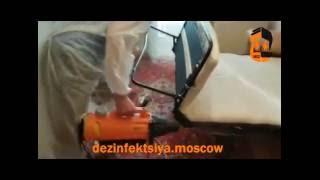 Уничтожение клопов в квартире(http://dezinfektsiya.moscow/, 2016-08-05T09:52:12.000Z)