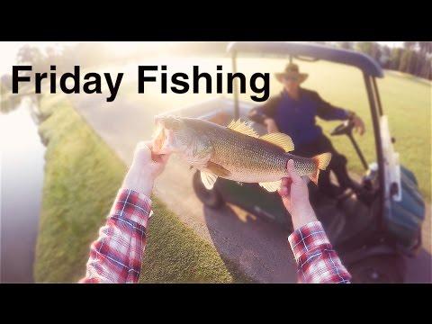 Friday Fishing: 5lb Largemouth Bass!