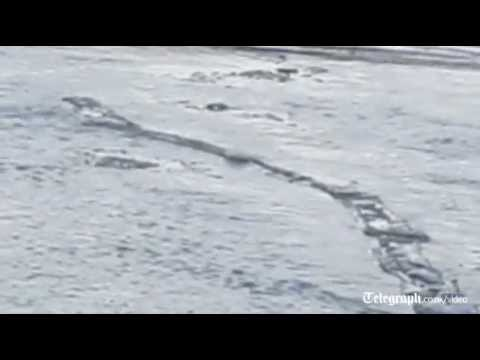 Iceland's 'Loch Ness' monster spotted?