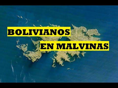 ¿Bolivia entró en la Guerra de Malvinas? (Historias de un minuto)