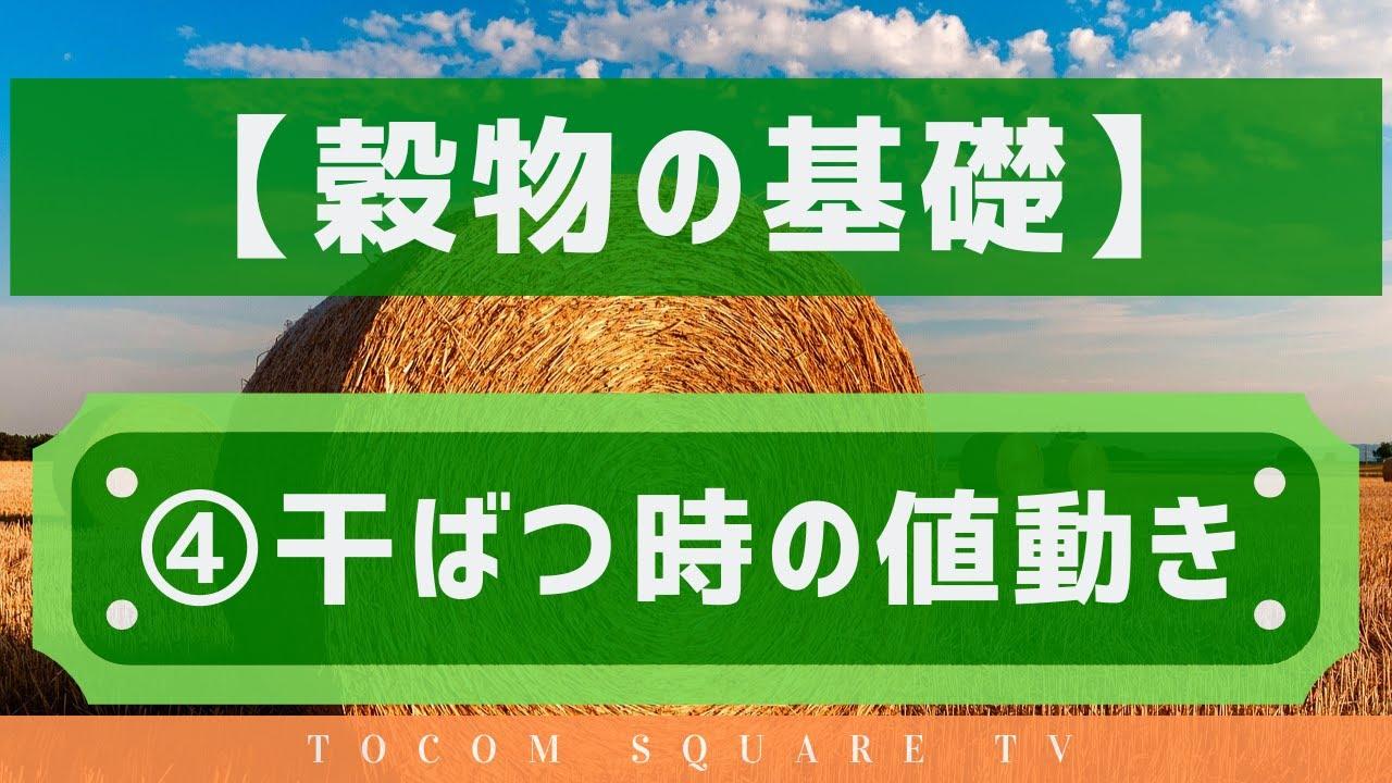 穀物の基礎知識④干ばつ時の値動き「TOCOMスクエアTV」商品先物相場展望