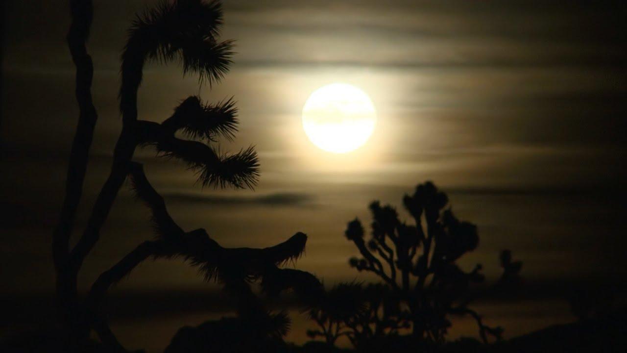 Boa Noite Bom Descanso: Boa Noite E Bom Descanso